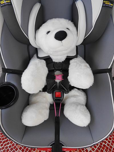 Buckle In Buddy - Buckled bear in car seat