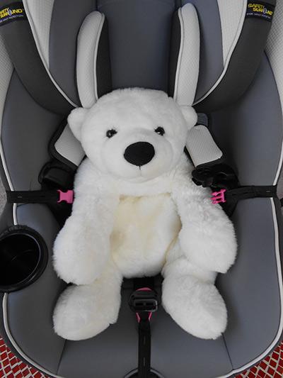 Buckle In Buddy - Unbuckled bear in car seat